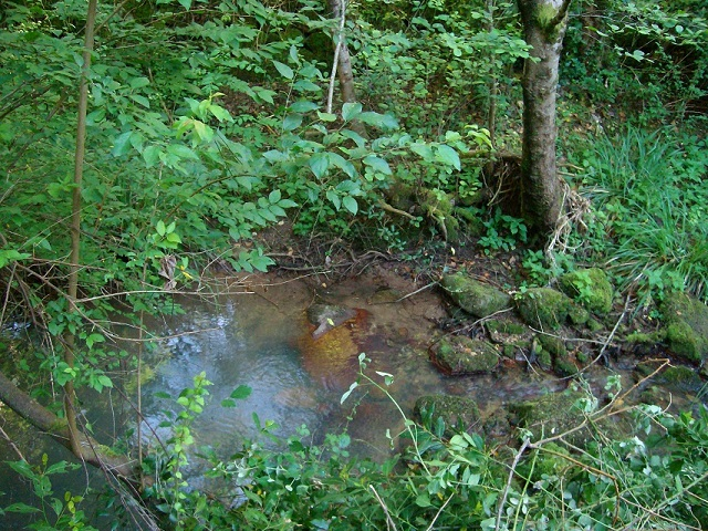 bassin ruisseau