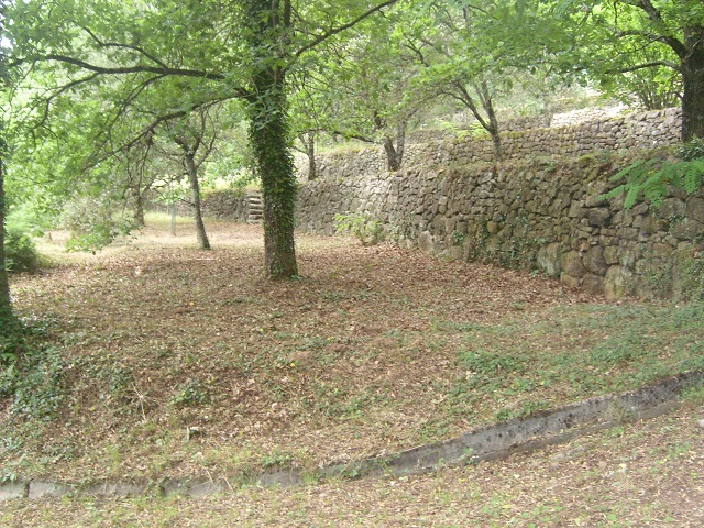 chênes truffier